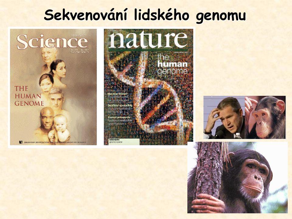 Sekvenování lidského genomu