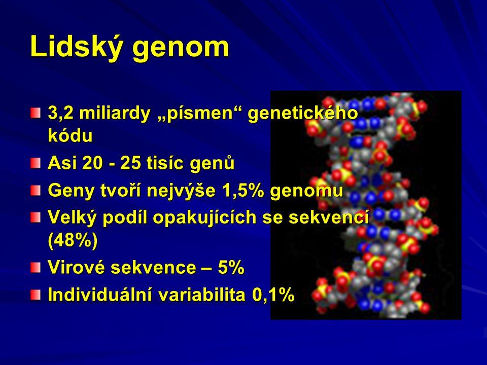 """Lidský genom 3,2 miliardy """"písmen genetického kódu"""