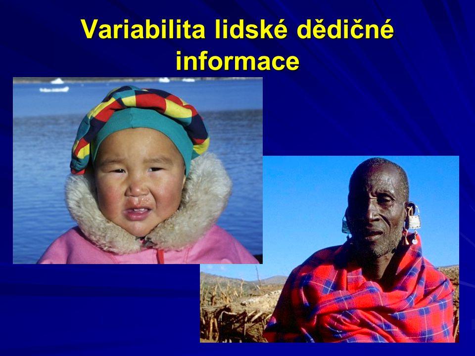 Variabilita lidské dědičné informace