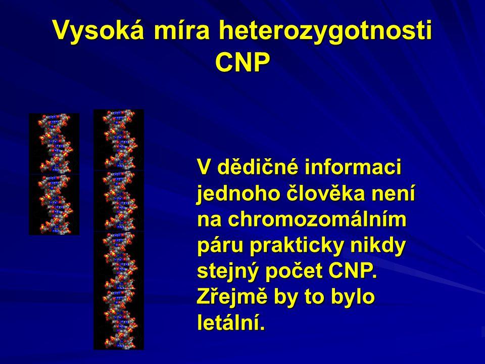 Vysoká míra heterozygotnosti CNP