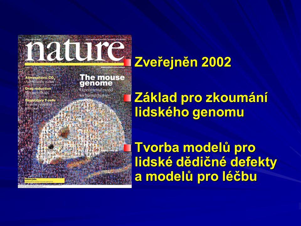 Zveřejněn 2002 Základ pro zkoumání lidského genomu.