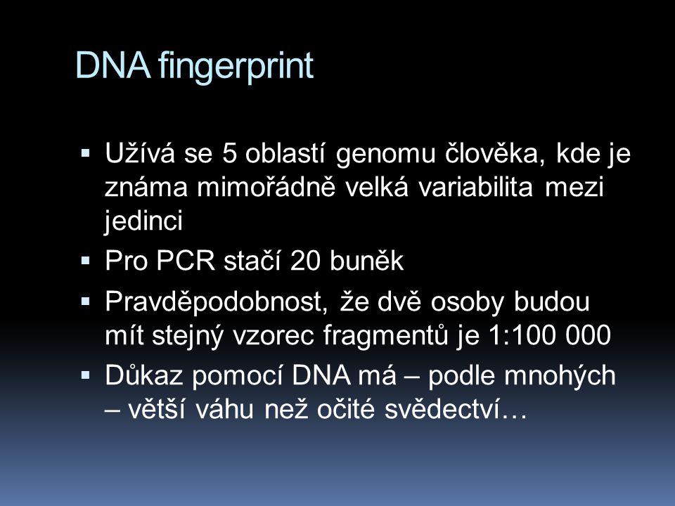 DNA fingerprint Užívá se 5 oblastí genomu člověka, kde je známa mimořádně velká variabilita mezi jedinci.