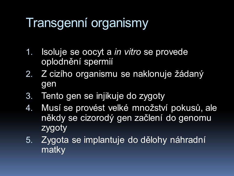 Transgenní organismy Isoluje se oocyt a in vitro se provede oplodnění spermií. Z cizího organismu se naklonuje žádaný gen.