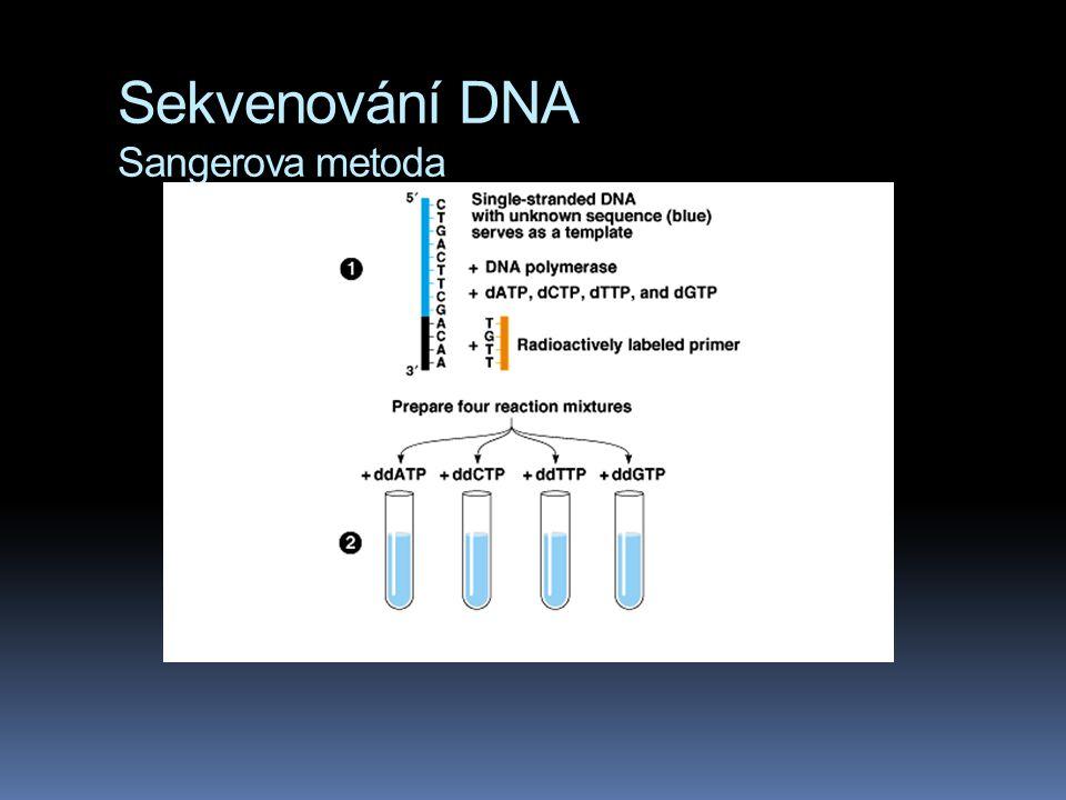 Sekvenování DNA Sangerova metoda