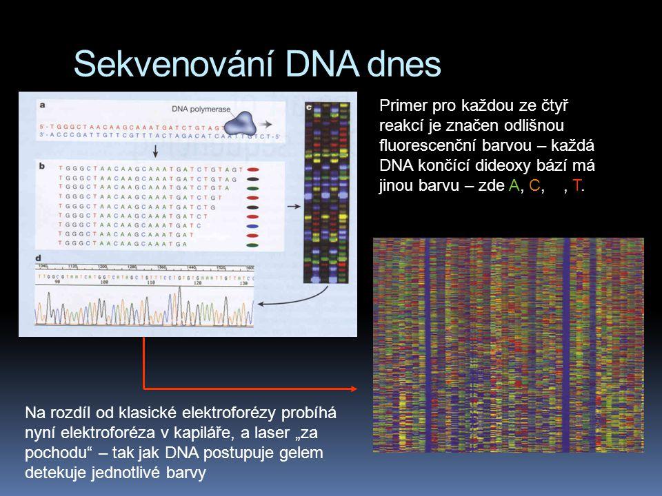 Sekvenování DNA dnes