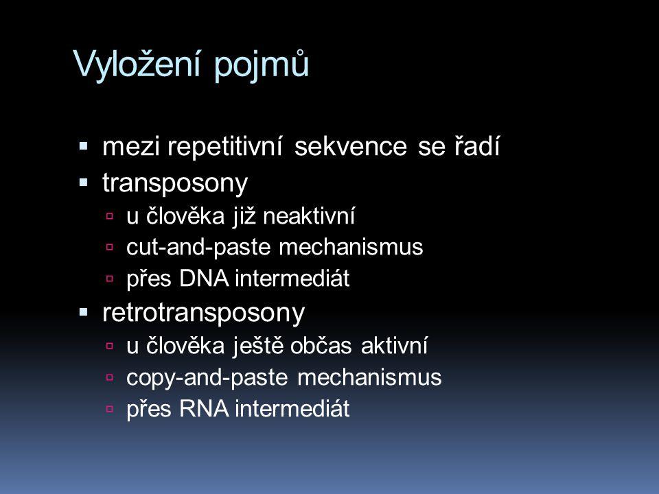 Vyložení pojmů mezi repetitivní sekvence se řadí transposony