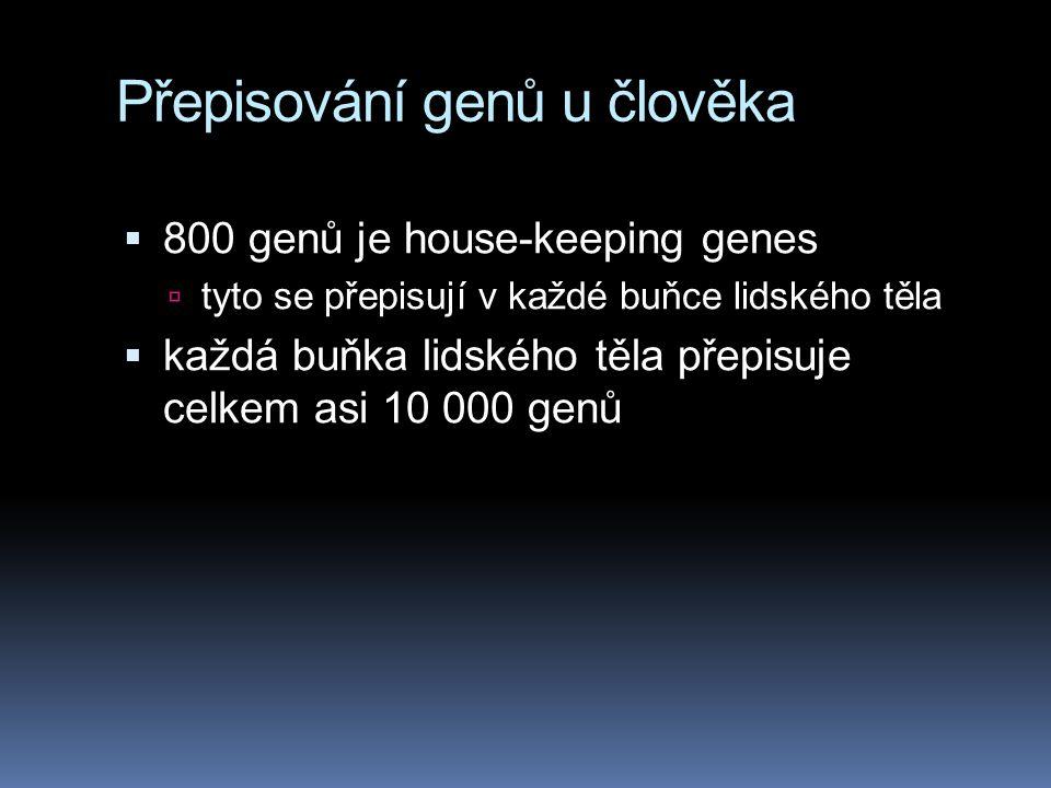 Přepisování genů u člověka
