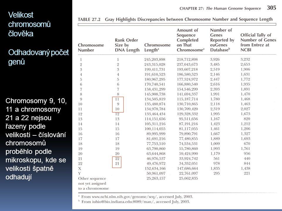 Velikost chromosomů člověka Odhadovaný počet genů