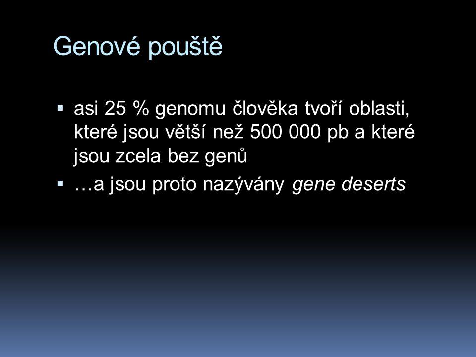 Genové pouště asi 25 % genomu člověka tvoří oblasti, které jsou větší než 500 000 pb a které jsou zcela bez genů.