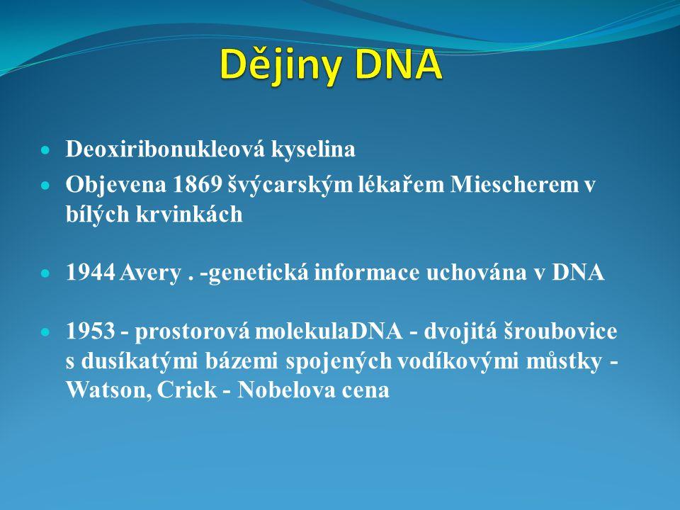 Dějiny DNA Deoxiribonukleová kyselina