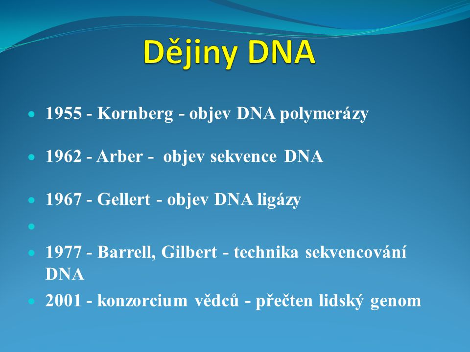 Dějiny DNA 1955 - Kornberg - objev DNA polymerázy