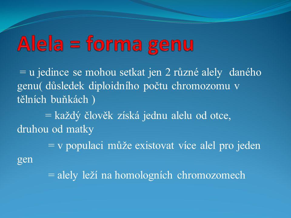 Alela = forma genu = u jedince se mohou setkat jen 2 různé alely daného genu( důsledek diploidního počtu chromozomu v tělních buňkách )