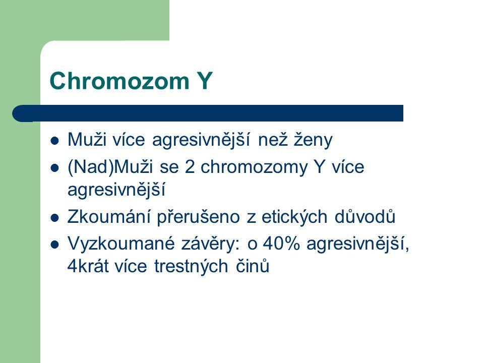 Chromozom Y Muži více agresivnější než ženy