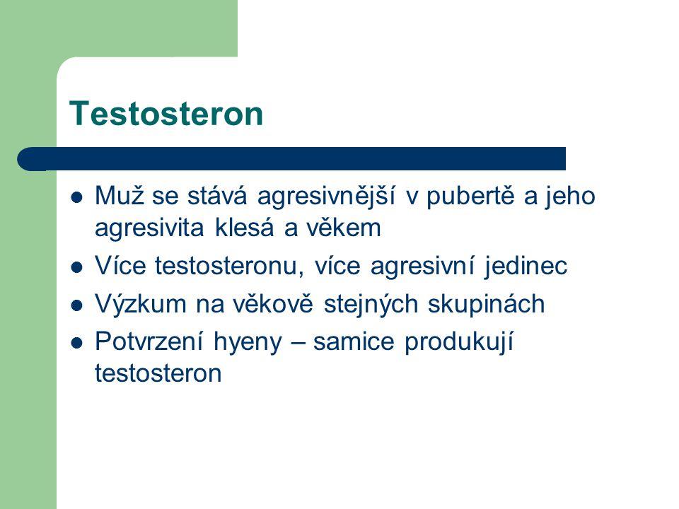 Testosteron Muž se stává agresivnější v pubertě a jeho agresivita klesá a věkem. Více testosteronu, více agresivní jedinec.