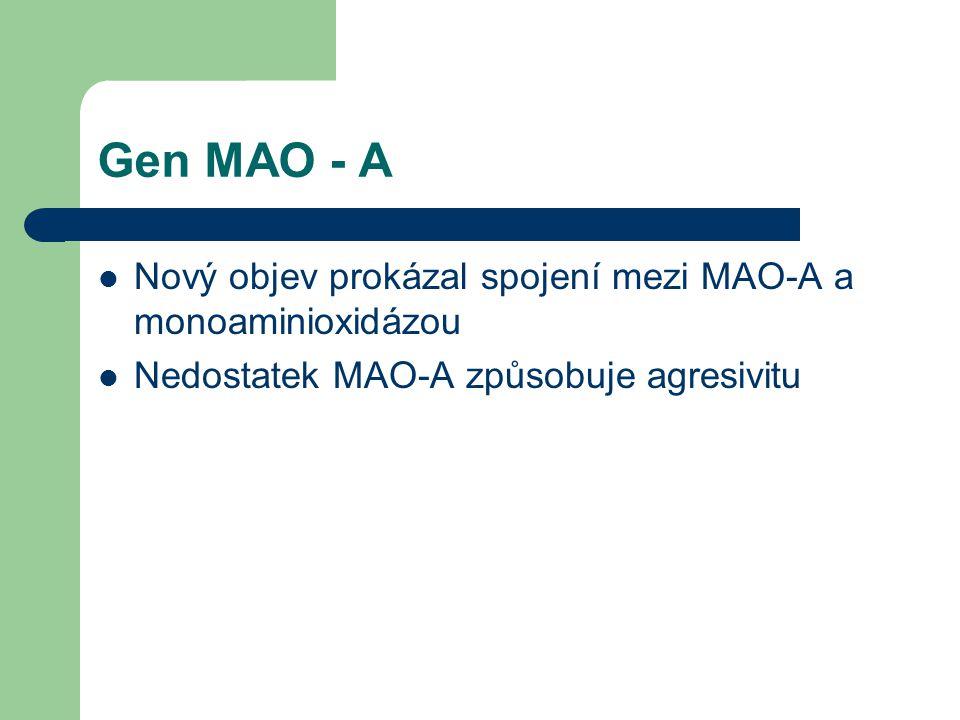Gen MAO - A Nový objev prokázal spojení mezi MAO-A a monoaminioxidázou