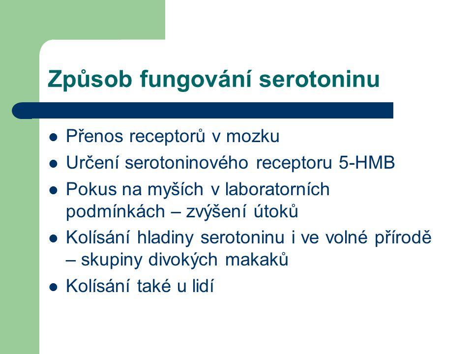 Způsob fungování serotoninu