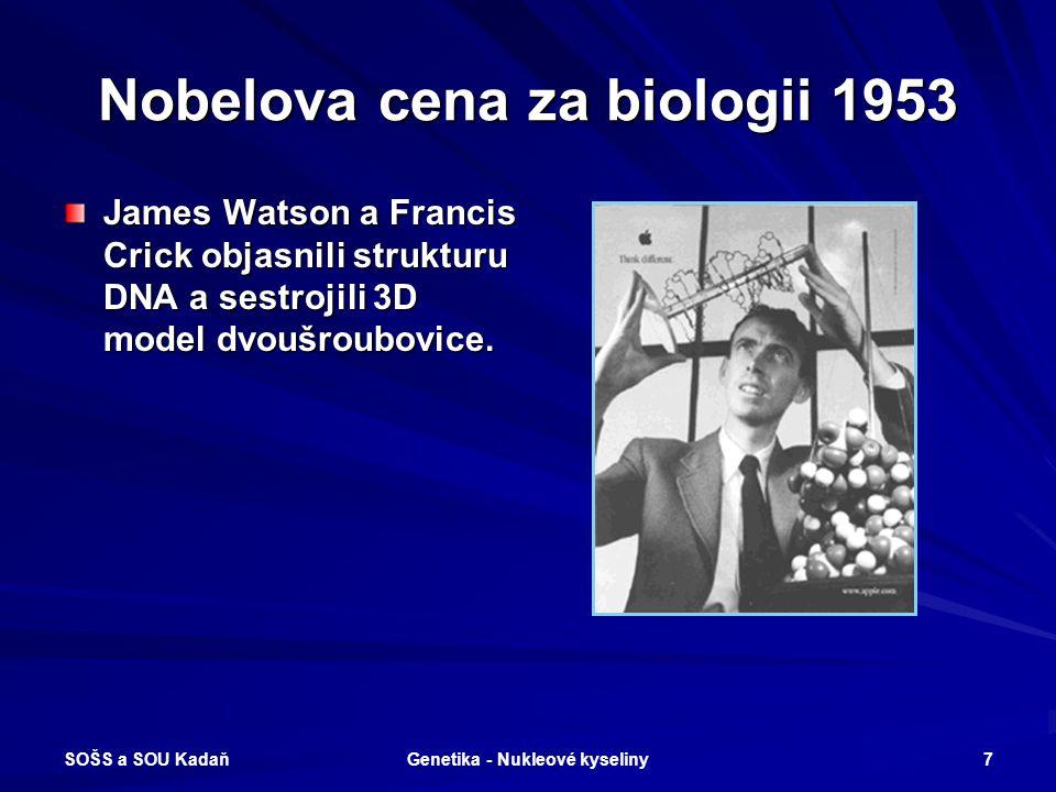 Nobelova cena za biologii 1953
