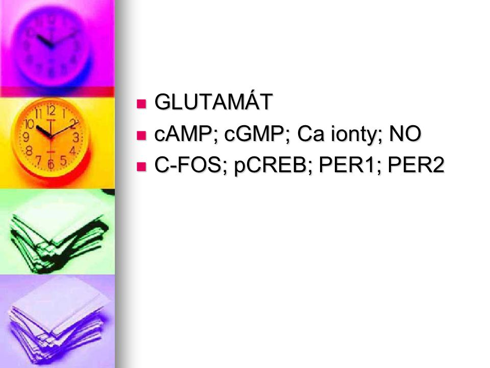 GLUTAMÁT cAMP; cGMP; Ca ionty; NO C-FOS; pCREB; PER1; PER2