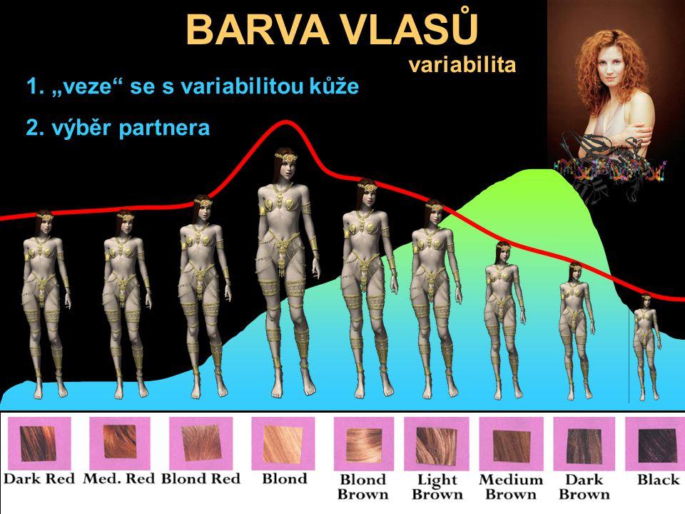 """BARVA VLASŮ variabilita """"veze se s variabilitou kůže výběr partnera"""