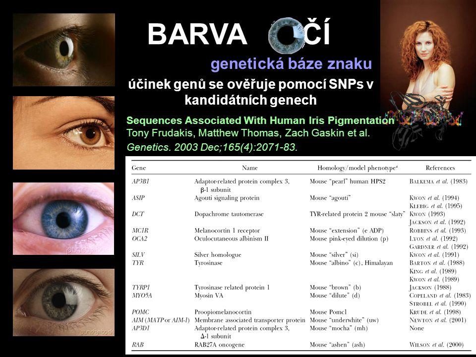 účinek genů se ověřuje pomocí SNPs v kandidátních genech