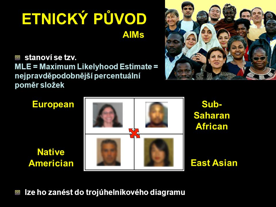 ETNICKÝ PŮVOD AIMs European Native Americian East Asian