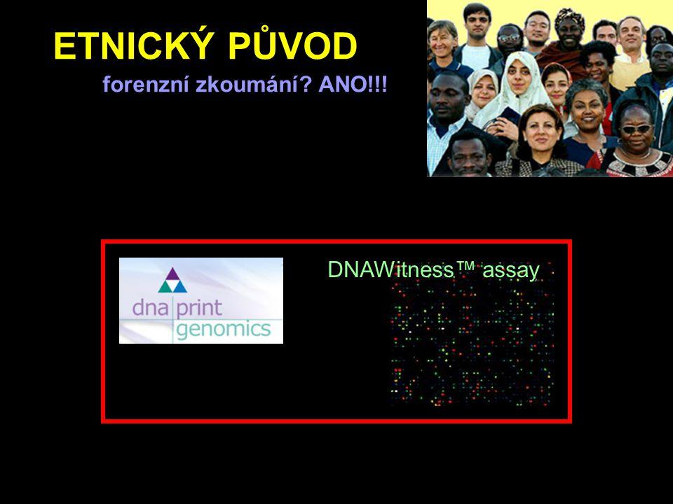 ETNICKÝ PŮVOD forenzní zkoumání ANO!!! DNAWitness™ assay
