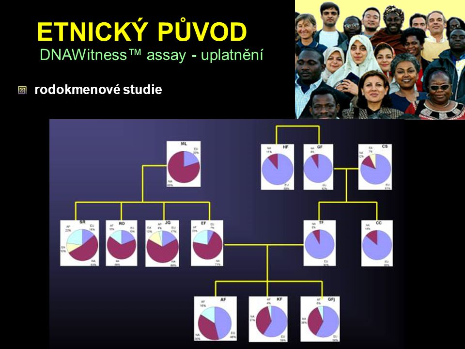 ETNICKÝ PŮVOD DNAWitness™ assay - uplatnění rodokmenové studie
