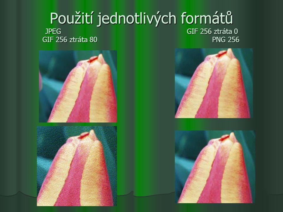 Použití jednotlivých formátů JPEG. GIF 256 ztráta 0 GIF 256 ztráta 80
