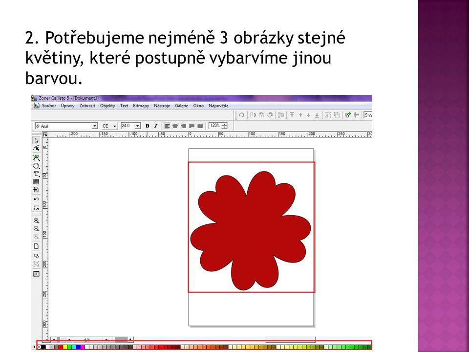 2. Potřebujeme nejméně 3 obrázky stejné květiny, které postupně vybarvíme jinou barvou.
