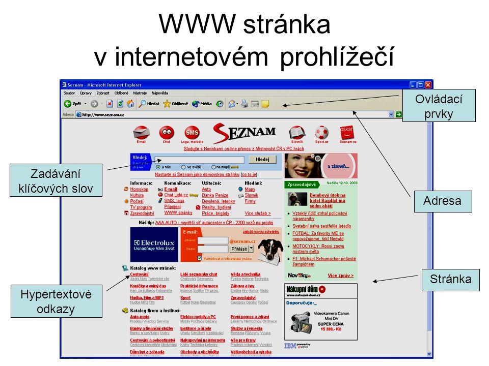 WWW stránka v internetovém prohlížečí