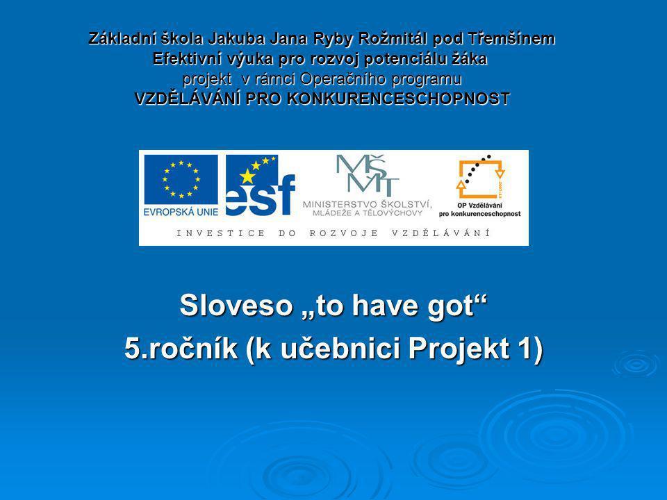 """Sloveso """"to have got 5.ročník (k učebnici Projekt 1)"""