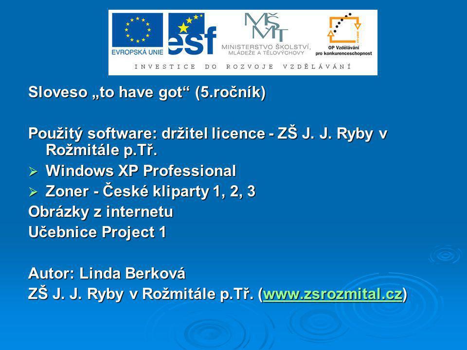 """Sloveso """"to have got (5.ročník)"""