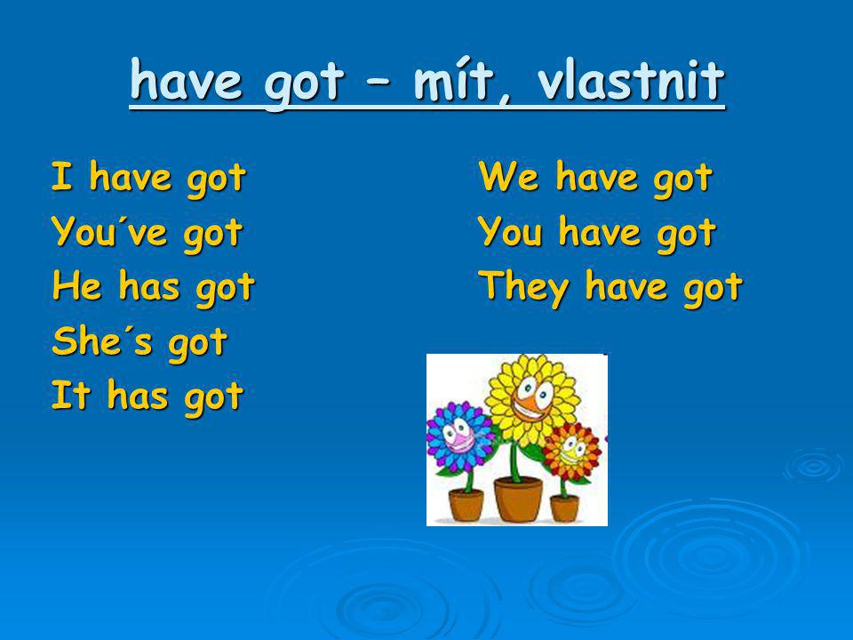 have got – mít, vlastnit I have got We have got