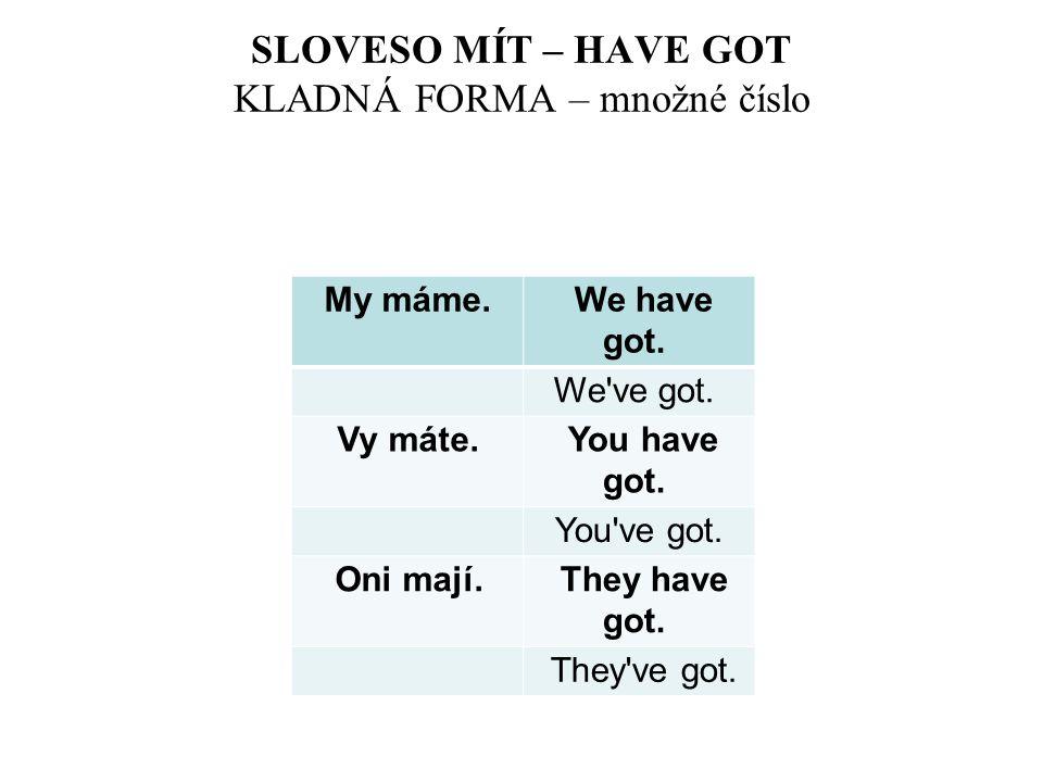 SLOVESO MÍT – HAVE GOT KLADNÁ FORMA – množné číslo