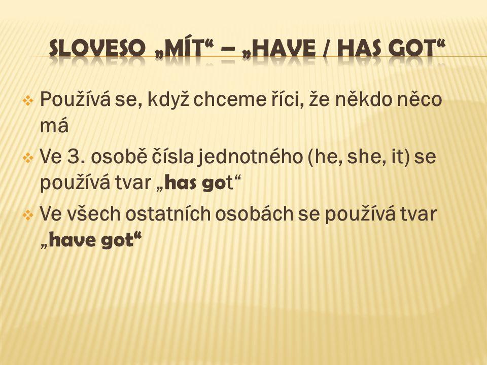"SLOVESO ""MÍT – ""HAVE / HAS GOT"