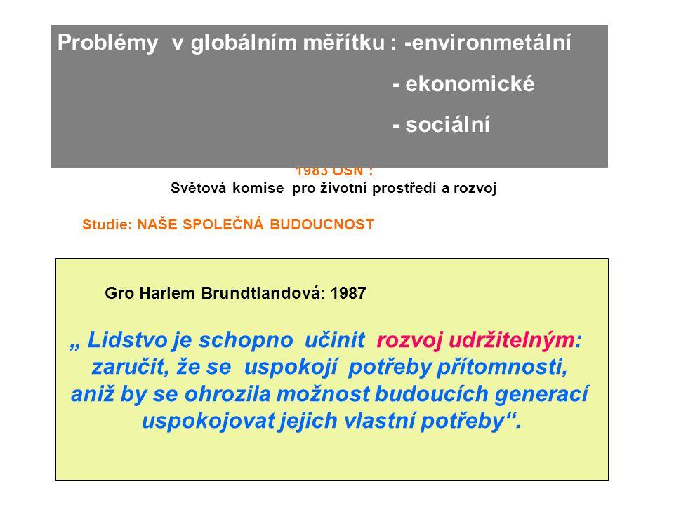 Problémy v globálním měřítku : -environmetální - ekonomické - sociální