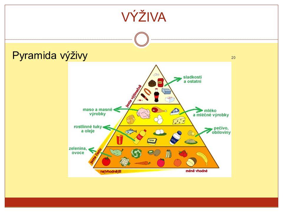 VÝŽIVA Pyramida výživy 20.