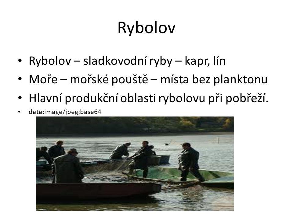 Rybolov Rybolov – sladkovodní ryby – kapr, lín
