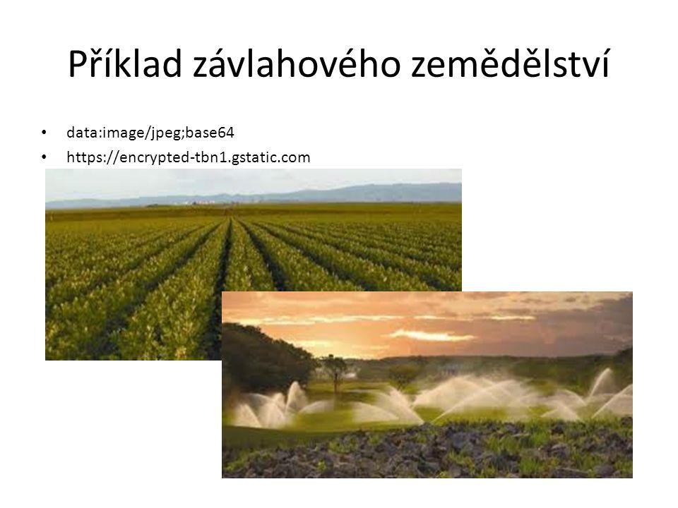 Příklad závlahového zemědělství