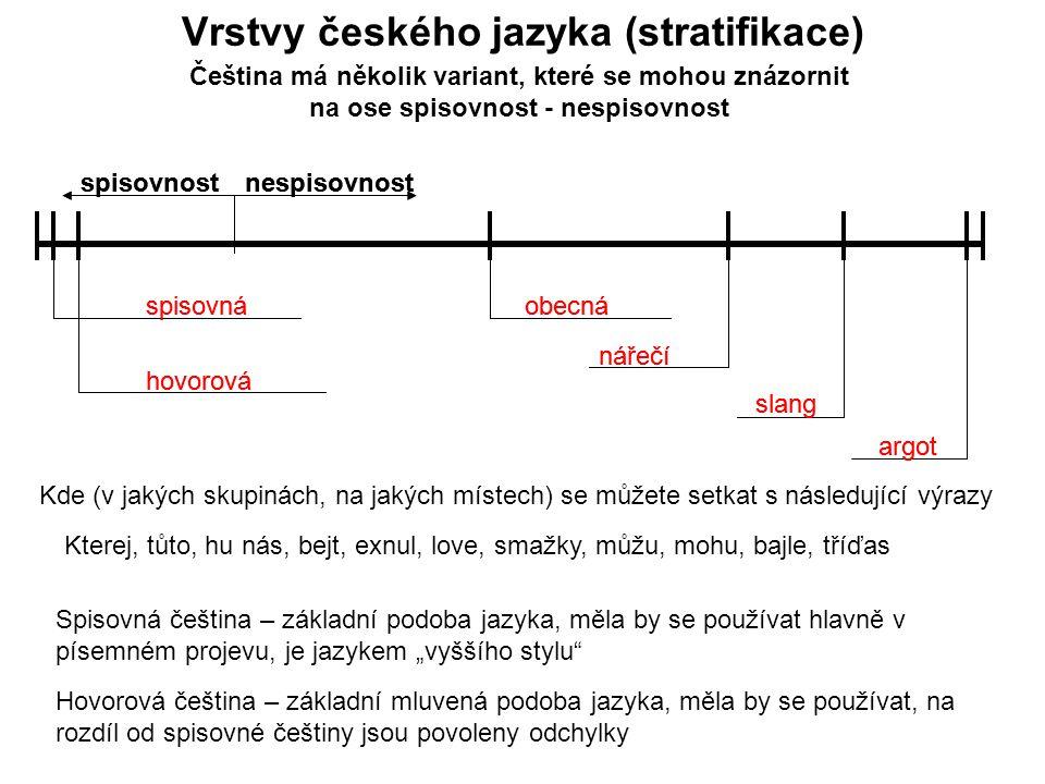 Vrstvy českého jazyka (stratifikace)