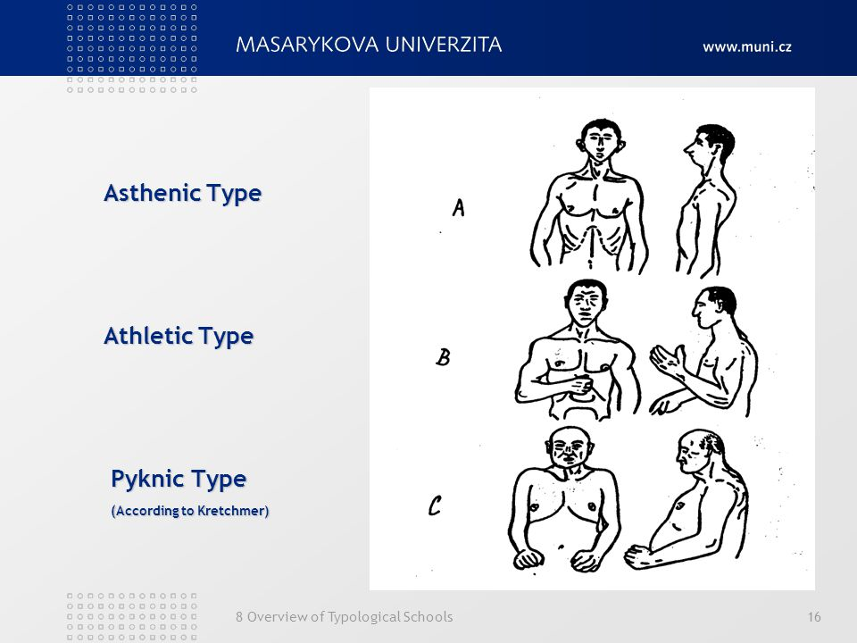 Asthenic Type Athletic Type Pyknic Type (According to Kretchmer)