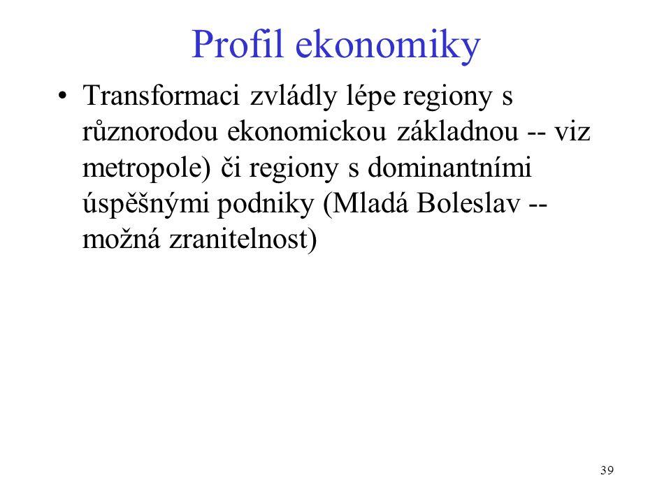 Profil ekonomiky
