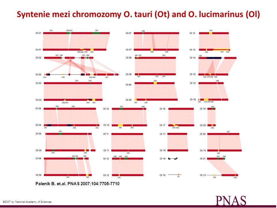 Syntenie mezi chromozomy O. tauri (Ot) and O. lucimarinus (Ol)