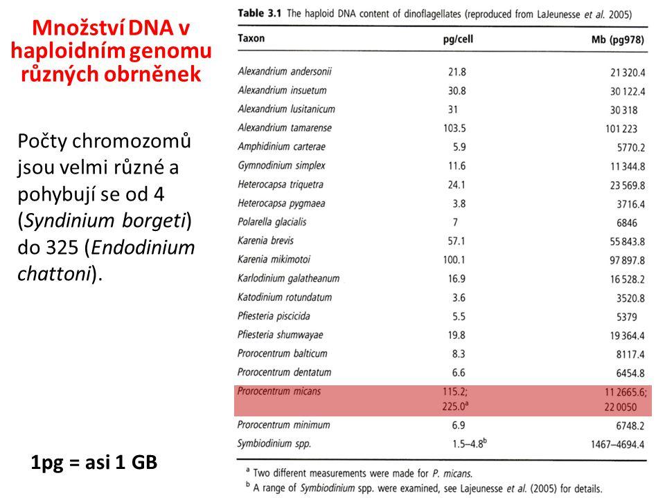 Množství DNA v haploidním genomu různých obrněnek