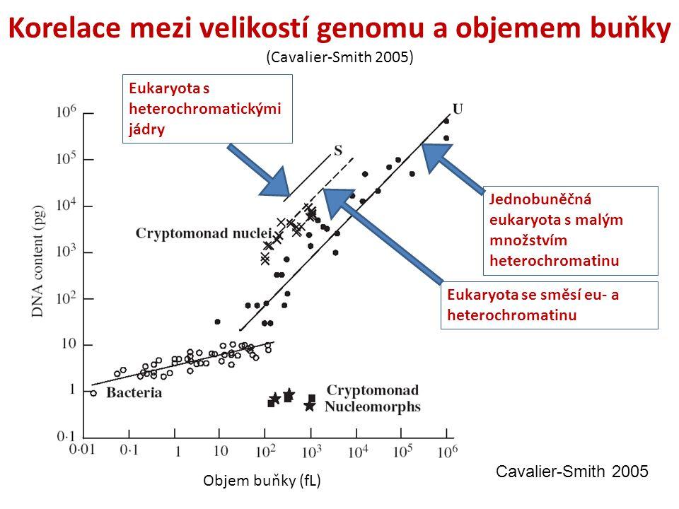 Korelace mezi velikostí genomu a objemem buňky (Cavalier-Smith 2005)