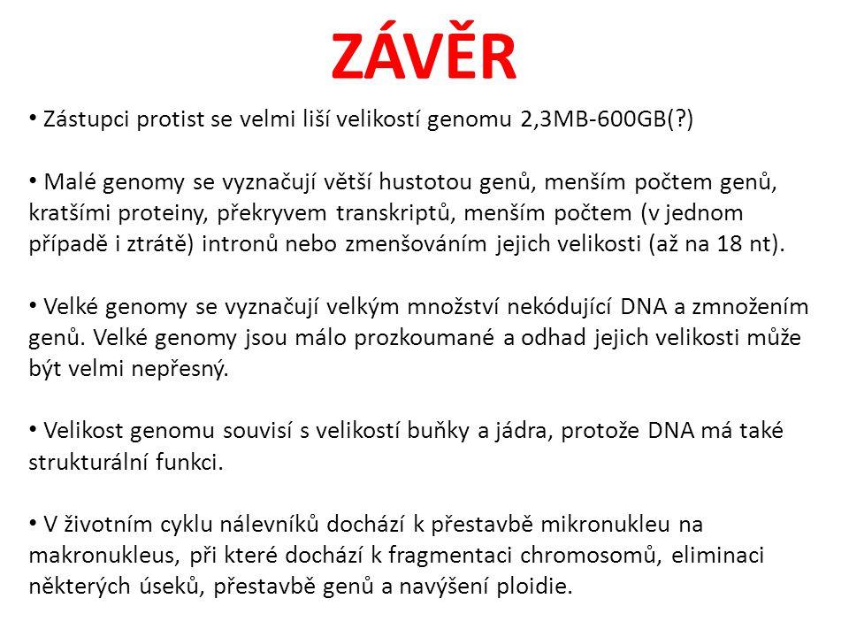 ZÁVĚR Zástupci protist se velmi liší velikostí genomu 2,3MB-600GB( )