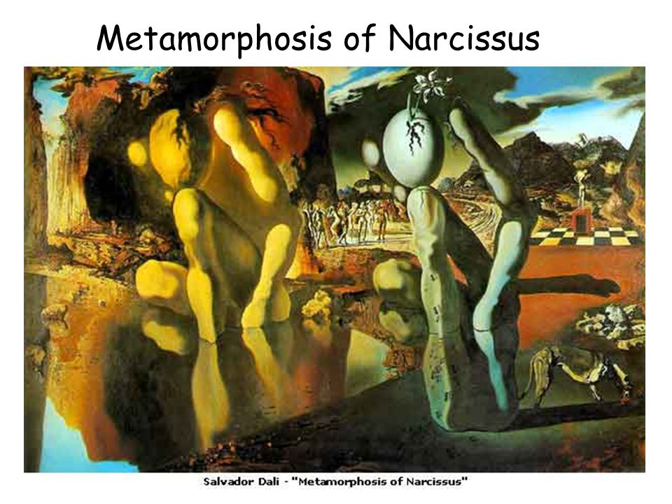 Metamorphosis of Narcissus