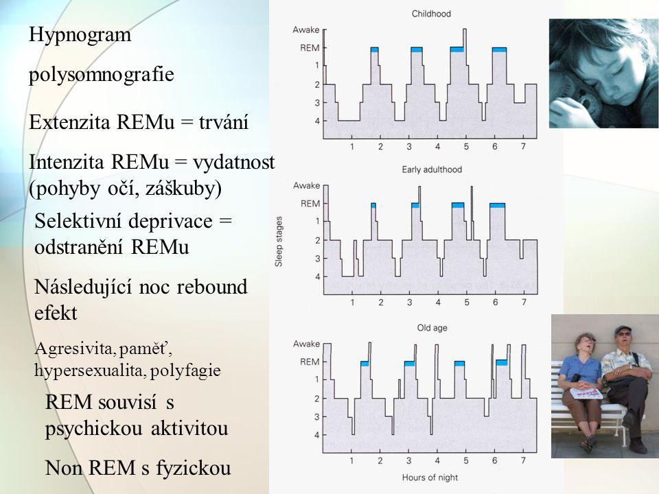 Extenzita REMu = trvání