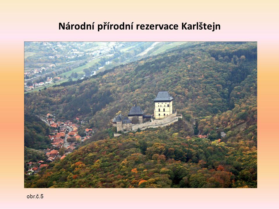 Národní přírodní rezervace Karlštejn