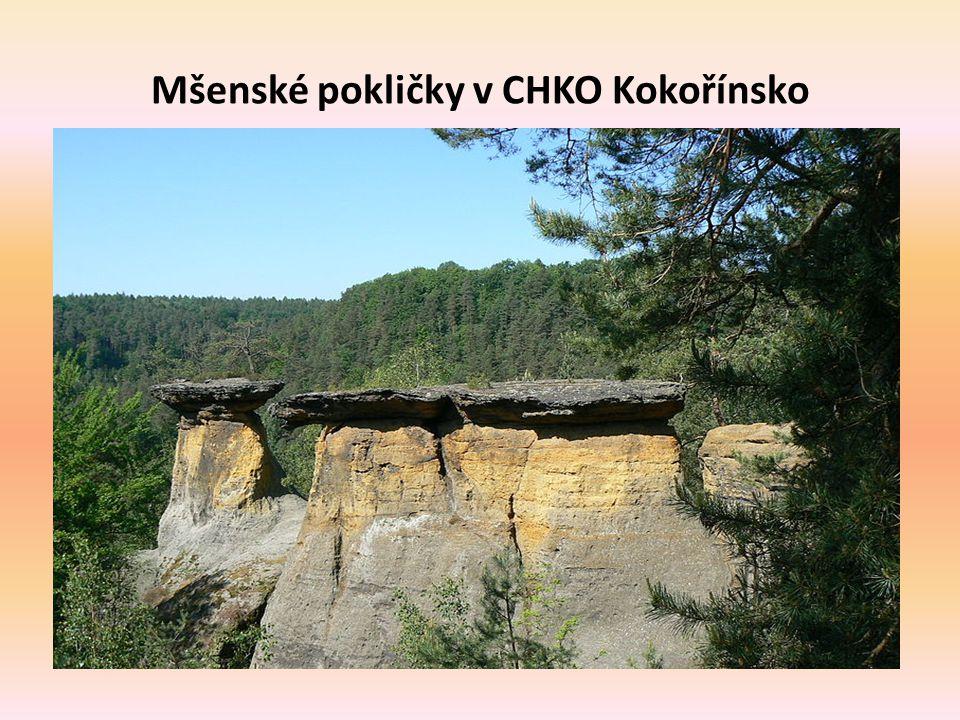 Mšenské pokličky v CHKO Kokořínsko